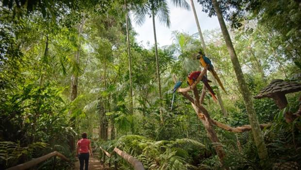 Ticket Loko - Parque das Aves em Foz
