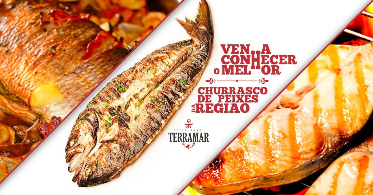 Terramar 3